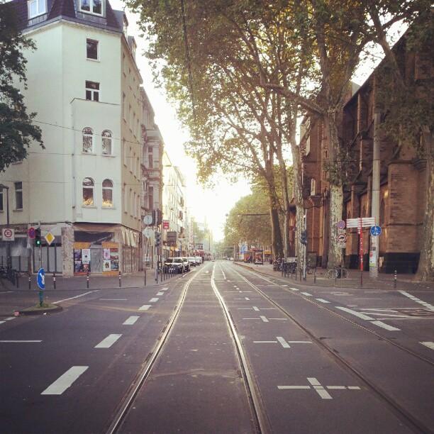 Cologne mornings.