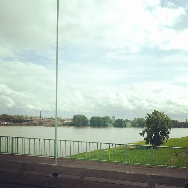 Rhein V