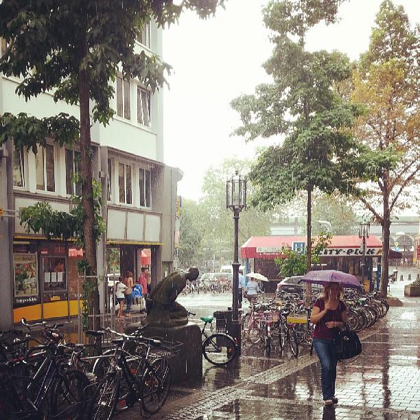 Heavy dropping summer rain - me love it!
