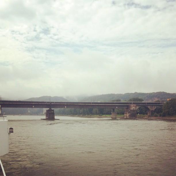Rhein XV