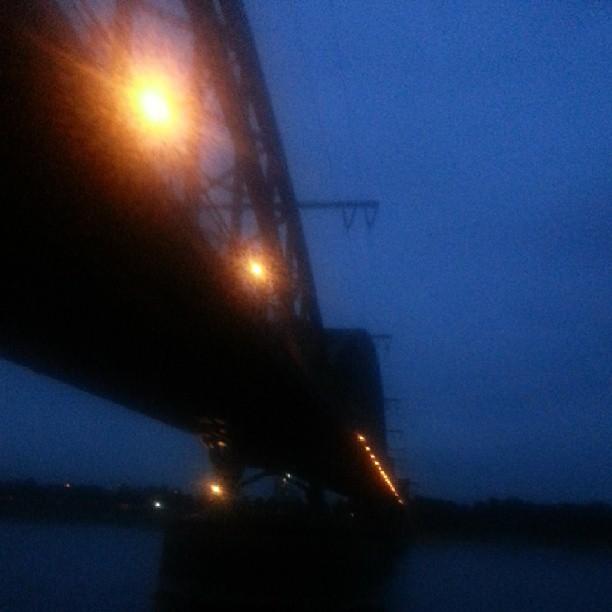 Rhein XVI