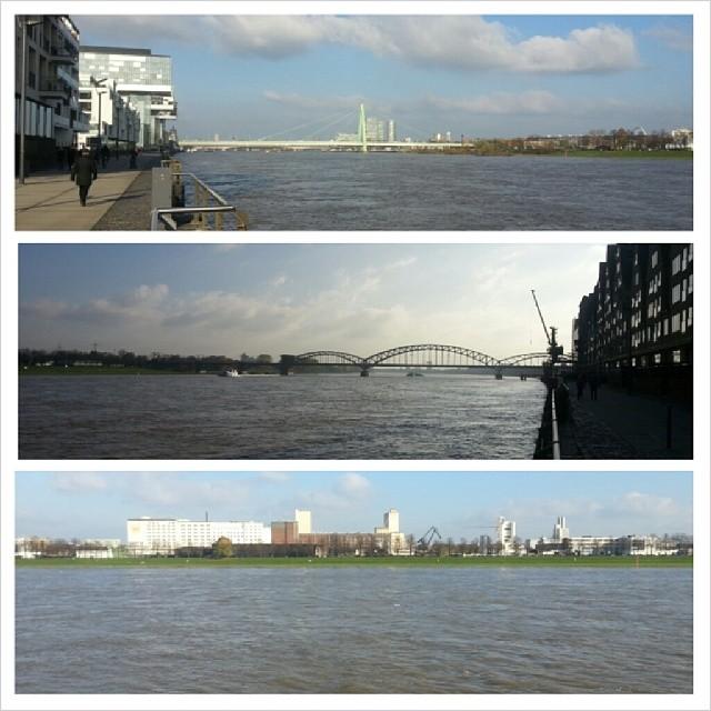 Rhein XVII