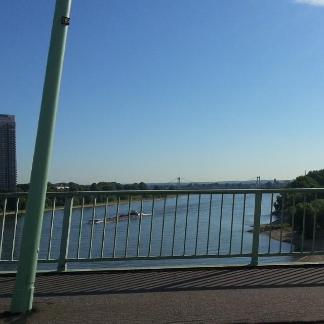Rhein XXI